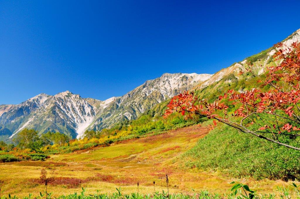 Best Places in Hakuba for Fall Colors